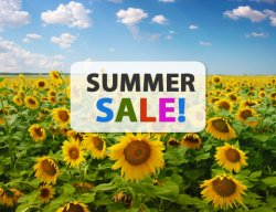 Großer DailyDeal Summer Sale am 28. August!