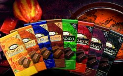 8 Sorten Rausch Plantagen- Schokolade gratis