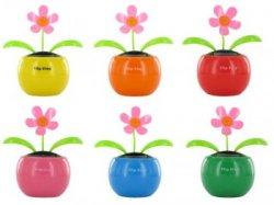 Wackelblume, Solarblume, Solarflower Flip Flap ab 1,99€