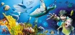 Nur 16,49€ statt 31€ für zwei Tagestickets ins Sea Life München