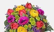 5€ gutschein und zusätzlich versandkostenfrei und optional 20% Rabatt bei Lidl Blumen