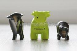 Kostenlos: Scoach-Bulle und Bär @Scoach Europa ag