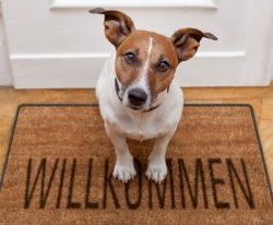 Fußmatte mit eigenem Fotomotiv 19€ statt 56,50€  @dailydeal