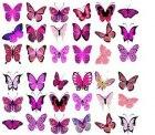 54 essbare Schmetterlinge für Torten, Kuchen und Muffins für nur 3,43€ mit Versand @eBay