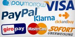 Zahlungsmethoden im Internet: Paypal und Co. werden immer beliebter