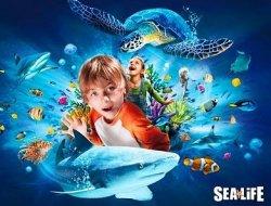 Urlaub an der Ostsee geplant?Ticket für das Sea Life Timmendorfer Strand für nur 8,90€ @Groupon