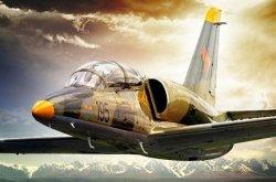 Kampfpilot für 1/2 Stunde im Kampfjet Aero L-39 Albatros fliegen für 1499€ (=57% Rabatt) @Groupon