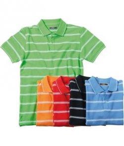 James & Nicholson Polo Shirt in 5 verschiedenen Farben für 4,76€ inkl. Versand @ ebay