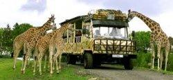 Serengeti Park Hodenhagen Freikarte im Wert von 27€ oder mit bis 7 Personen 50% Rabatt