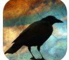 Distressed FX (Bildbearbeitungs App) für iOS Geräte zur Zeit gratis im iTunes Store