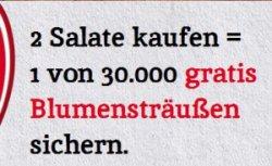 Gratis Blumenstrauß durch Code von 2 Homann Salaten