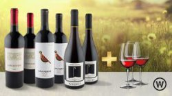 Premium Rotweinpaket mit 52 % Rabatt, versandkostenfrei & 3 Gläser gratis @Wine in Black