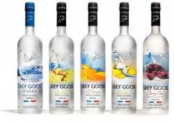 Premium-Wodka Grey Goose 0,7L für 28€ statt 36,85€ – Versandkostenfrei durch Gutschein @drinkdealer.de