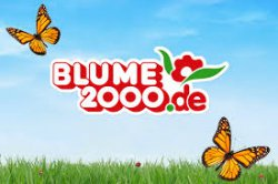 5,-€ Rabatt bei BLUME2000 mit Gutscheincode, 19,95€ MBW