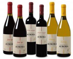 25€ Gutschein ab 50€ MBW (50%) bei @Weinvorteil z.B. Wein Probierpaket Brasilien für 34,49€ (Originalpreis ink. Versand 59,49€)