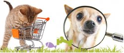 Katzenland.de und Hundeland.de mit bis zu 60% Rabatt + 20% Extra Rabatt