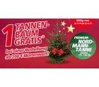 real: Gratis Nordmanntanne bei online Einkauf MBW 200€