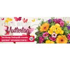 Zum Muttertag 5 € Rabatt auf Blumenstrauß +versandkostenfrei @Lidl-Blumenservice