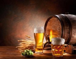 Kostenlos statt 1€ :Bier Brauer Bier selbst brauen 150seitiges Ebook mit Techniken und Rezepten