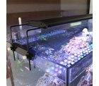 Amazon: Eco voll Spectrum LED Aquarium Beleuchtung mit Gutschein für nur 18 Euro statt 59,90 Euro