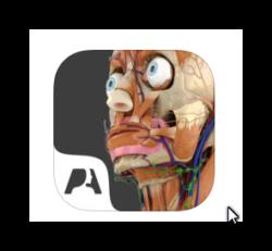 iTunes: Pocket Anatomy App kostenlos statt 15 Euro