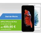 AllYouNeed: Apple iPhone 6 oder 6s Plus (Demoware) für nur 489,95 Euro statt 656,10 Euro bei Idealo (Neuware)
