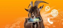 Vitrado – Nur bis Montag Smartphone Flat 1000 mit 1GB Internet, 100 Frei-Minuten und EU-Roaming für 2,99€ mtl. statt 9,99€ mtl.
