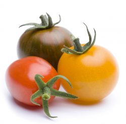 Tomatensamen gratis bestellen @ Heinrich Böll Stiftung